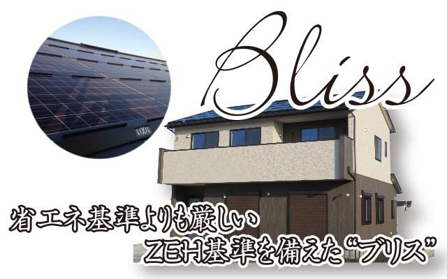 bliss (1)